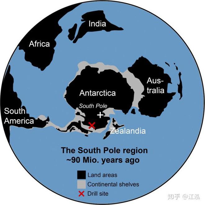 Nam Cực đã từng được bao phủ bởi rừng mưa ôn đới 90 triệu năm trước - Ảnh 14.