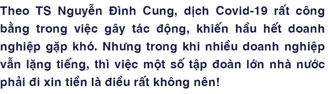"""TS Nguyễn Đình Cung: """"Tôi rất mong các tập đoàn nhà nước ngừng than vãn và ngừng xin tiền"""" - Ảnh 1."""