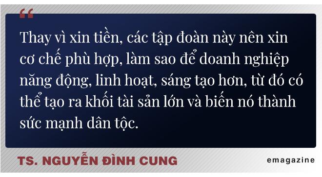 """TS Nguyễn Đình Cung: """"Tôi rất mong các tập đoàn nhà nước ngừng than vãn và ngừng xin tiền"""" - Ảnh 5."""