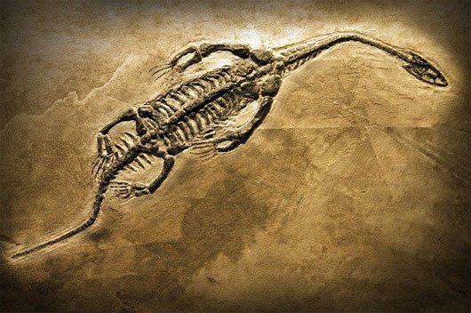Nếu khủng long tồn tại đến thời hiện đại, trái đất sẽ ra sao? - Ảnh 4.