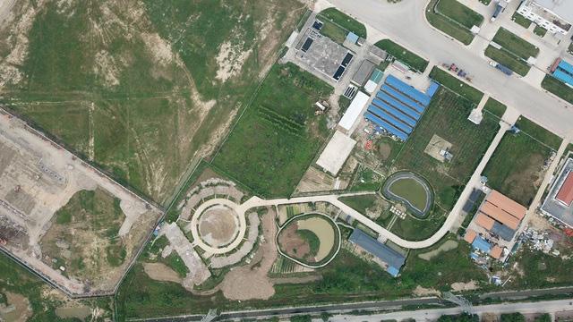 Hải Phòng: Phá bỏ vườn hoa do doanh nghiệp Trung Quốc xây trái phép giống đường lưỡi bò - Ảnh 1.