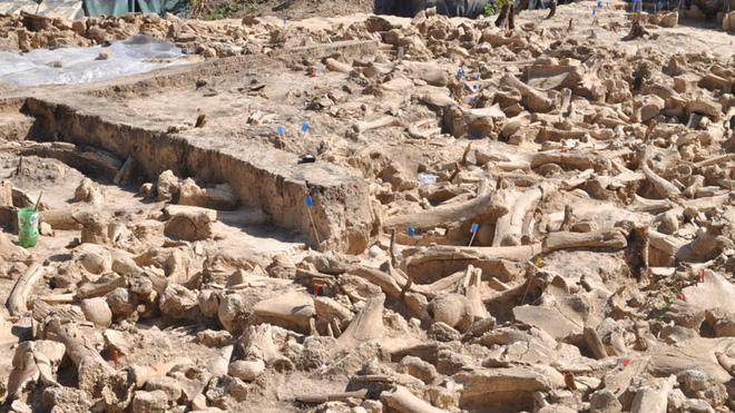 Đẹp độc lạ: Người tiền sử xây nhà sống qua Kỷ băng hà từ xương quái thú nặng 9 tấn? - Ảnh 2.