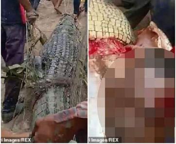 Indonesia: Mổ bụng cá sấu 4m, phát hiện thi thể người - Ảnh 2.