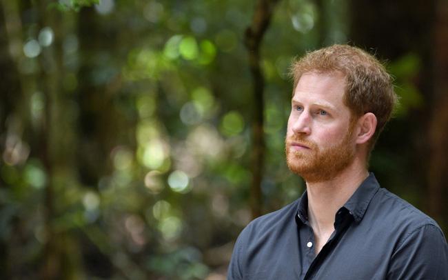 Harry lần đầu thừa nhận cuộc sống hoàn toàn bị đảo lộn sau khi rời hoàng gia nhưng không trách Meghan Markle - Ảnh 4.