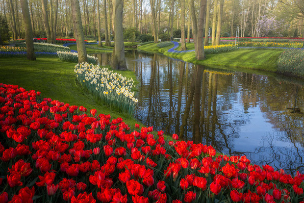 Vườn hoa đẹp nhất thế giới đóng cửa sau 71 năm, nhiếp ảnh gia tò mò muốn vào bên trong thì choáng ngợp với cảnh tượng trước mắt - Ảnh 18.