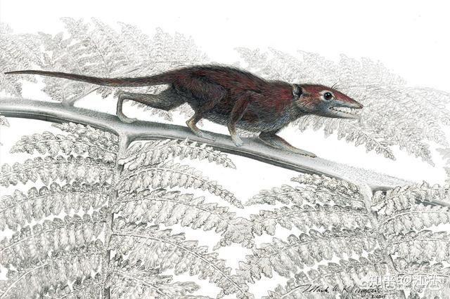 Tại sao không có động vật có vú khổng lồ trong kỷ nguyên khủng long? - Ảnh 2.