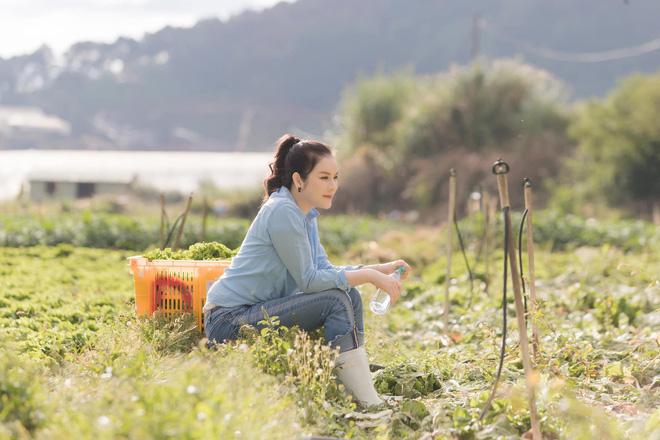 Lý Nhã Kỳ ở nhà làm nông mùa dịch: Giản dị đội nón lá, diện đồ ngủ đi hái trái cây trên nông trại 50 hecta ở Đà Lạt - Ảnh 6.
