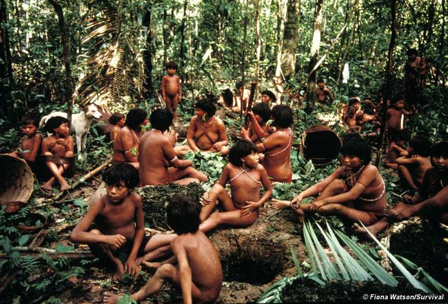 Bộ lạc kỳ dị ở Nam Mỹ: Cuộc sống khép kín và hủ tục mai táng bằng cách ăn tro cốt của người chết - Ảnh 3.