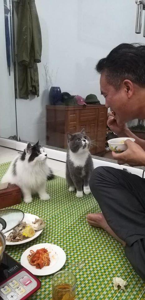 Con ruột đắm đuối nhìn bố ăn cơm, danh tính của 2 cụ cậu khiến dân tình không thể nhịn cười - Ảnh 1.