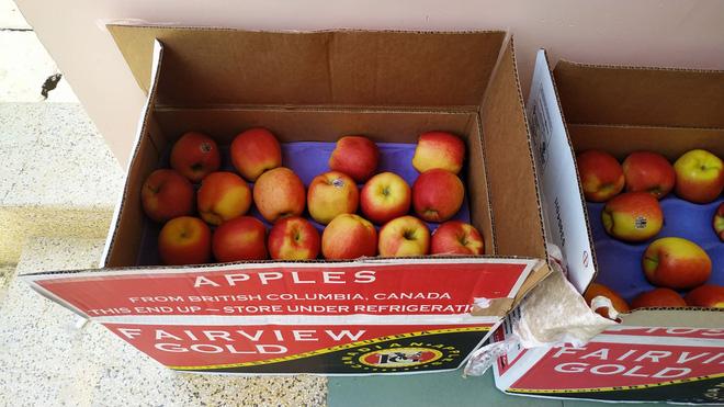 Những phần cơm cách ly bắt mắt và đẩy đủ dinh dưỡng gây sốt MXH: Thực đơn thay đổi liên tục, có thêm cả nho Úc, táo Canada - Ảnh 10.