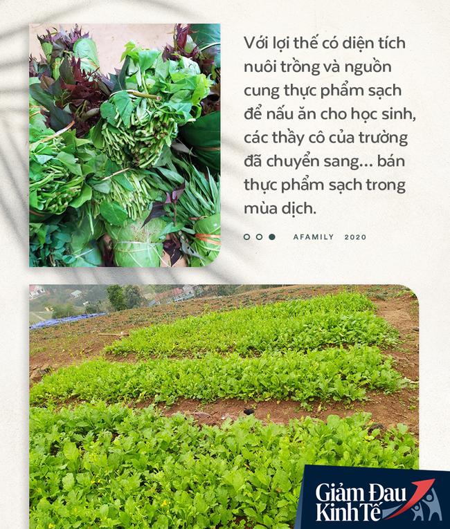 """Chống Covid-19, ngôi trường cách Hà Nội 40km biến thành trang trại thực phẩm sạch; giáo viên tự bắt cá, làm shipper, chốt đơn """"nhà nghề"""" - Ảnh 3."""