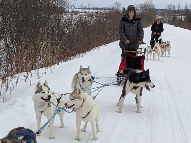 Cô gái sử dụng đàn chó kéo xe trượt tuyết để giao hàng cho người cao tuổi, giúp họ khỏi phải ra ngoài mua sắm - Ảnh 6.