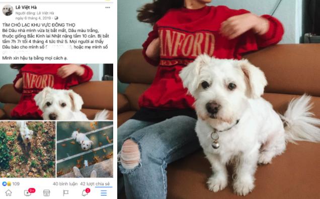 Câu chuyện chú chó đi lạc sau 1 năm và hành trình bất ngờ đoàn tụ với chủ cũ khi được giải cứu ở hàng thịt chó mèo khiến dân mạng vô cùng xúc động - Ảnh 1.