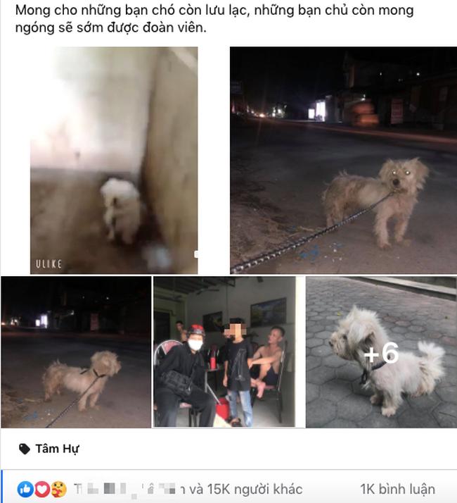 Câu chuyện chú chó đi lạc sau 1 năm và hành trình bất ngờ đoàn tụ với chủ cũ khi được giải cứu ở hàng thịt chó mèo khiến dân mạng vô cùng xúc động - Ảnh 2.