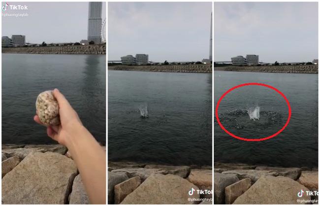 Đi biển mà không dám tắm, cô gái lấy hòn đá chọi xuống thì xuất hiện cảnh tượng bất ngờ, ai nhìn cũng xuýt xoa - Ảnh 1.