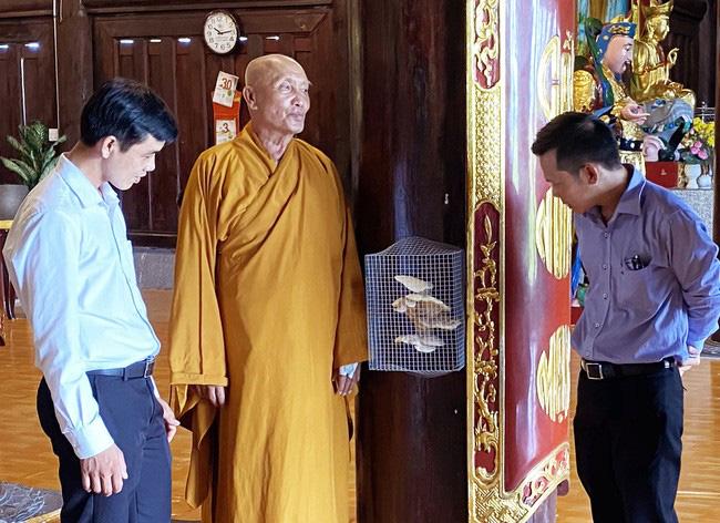 Cà Mau: Xôn xao nấm 4 tầng bất ngờ mọc ra từ cột gỗ lim Thiền Viện chỉ sau 1 đêm - Ảnh 1.