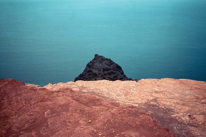 Bộ ảnh diệu kỳ từ thiên nhiên: Nếu  ngắm đủ lâu, ngẫm đủ kỹ bạn sẽ đọc được bí mật này - Ảnh 3.