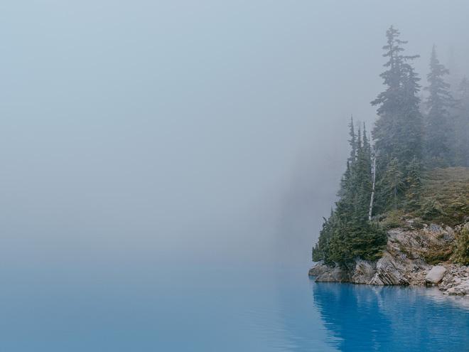 Bộ ảnh diệu kỳ từ thiên nhiên: Nếu  ngắm đủ lâu, ngẫm đủ kỹ bạn sẽ đọc được bí mật này - Ảnh 6.