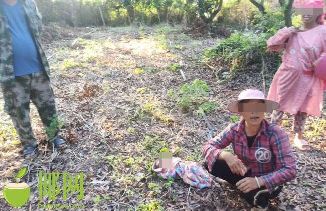 Người phụ nữ phát hiện em bé bị bỏ rơi khi đang làm việc đồng áng, mẹ đứa trẻ sau khi bị bắt đã giải thích lý do khó chấp nhận - Ảnh 1.