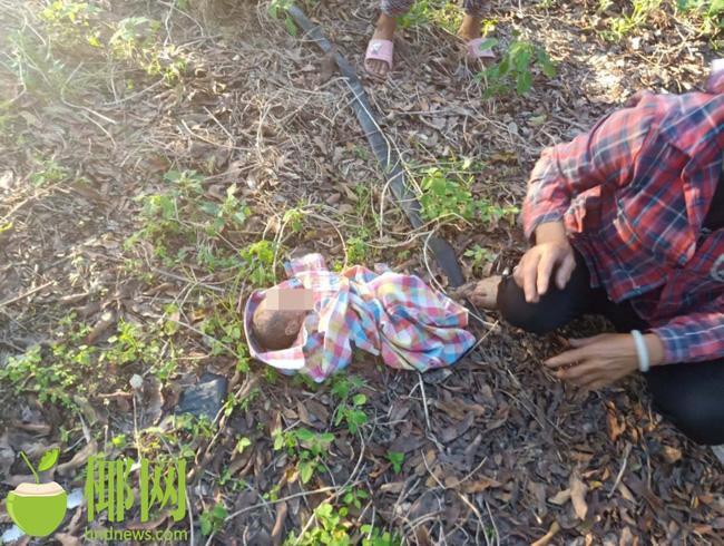 Người phụ nữ phát hiện em bé bị bỏ rơi khi đang làm việc đồng áng, mẹ đứa trẻ sau khi bị bắt đã giải thích lý do khó chấp nhận - Ảnh 3.