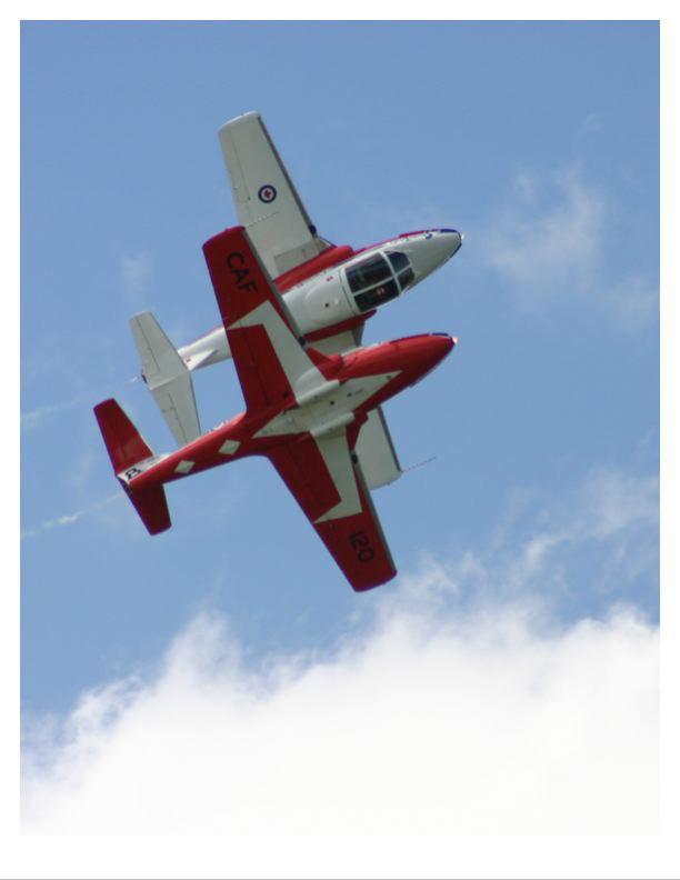 Bay cổ động chống COVID-19, máy bay Không quân Canada rơi, 2 người thương vong - Ảnh 3.