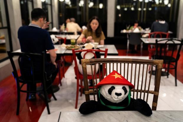 Sợ thực khách cô đơn trong mùa dịch, nhà hàng Việt nghĩ ra tuyệt chiêu hay ho khiến nhiều trang báo quốc tế đồng loạt đưa tin - Ảnh 1.