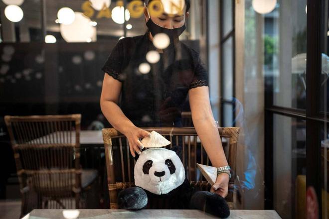 Sợ thực khách cô đơn trong mùa dịch, nhà hàng Việt nghĩ ra tuyệt chiêu hay ho khiến nhiều trang báo quốc tế đồng loạt đưa tin - Ảnh 3.