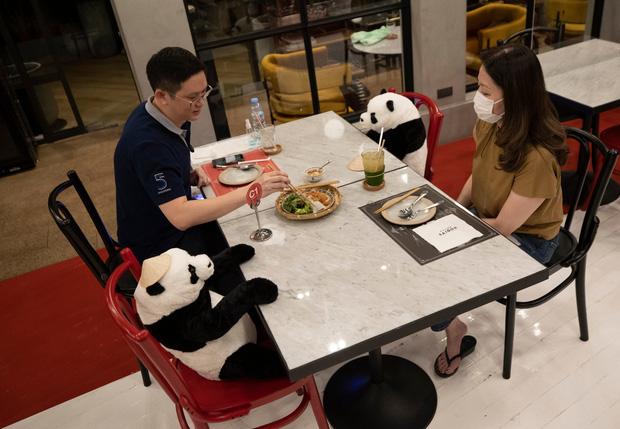 Sợ thực khách cô đơn trong mùa dịch, nhà hàng Việt nghĩ ra tuyệt chiêu hay ho khiến nhiều trang báo quốc tế đồng loạt đưa tin - Ảnh 4.