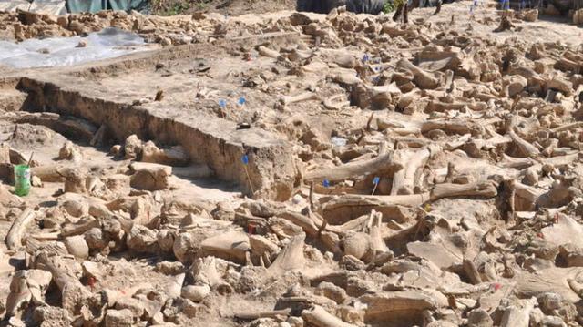 Phát hiện cấu trúc khổng lồ được làm từ xương voi ma mút 25.000 năm trước - Ảnh 5.