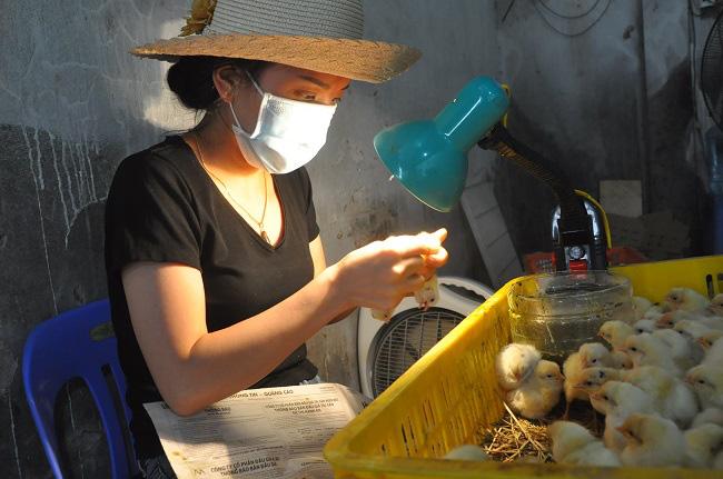 Nghề lạ mỗi ngày kiếm cả triệu đồng nhưng luôn khát người làm ở Hà Nội - Ảnh 4.