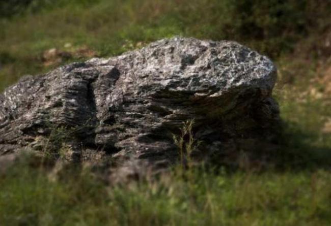 Làng Ding Wuling có một tảng đá giống hình con cóc.