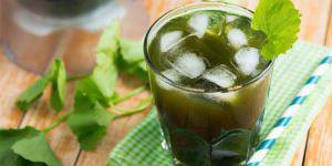 Thức uống mùa hè tốt cho sức khỏe - Ảnh 6.