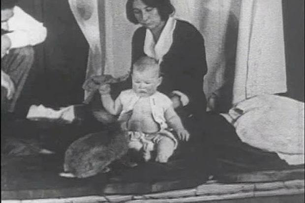 Albert bé nhỏ: Thí nghiệm tâm lý phi đạo đức thực hiện trên đứa trẻ 8 tháng tuổi gây ra nhiều tranh cãi nhất trong lịch sử nghiên cứu - Ảnh 4.