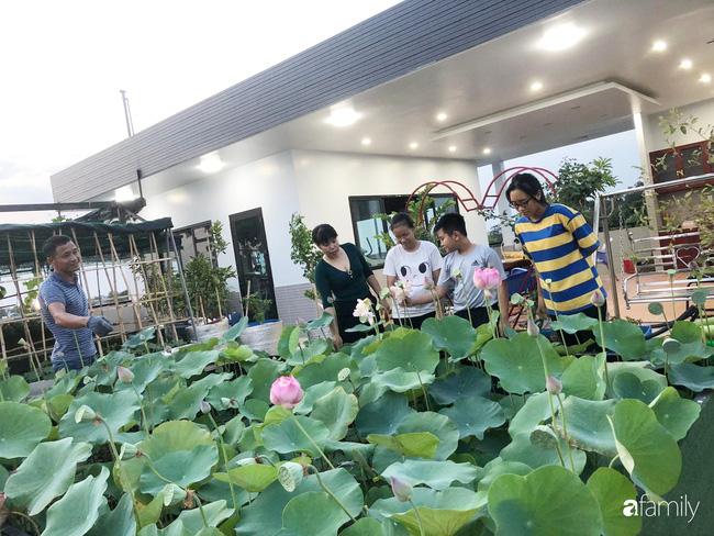 Doanh nhân Sài Gòn trồng cả vườn rau như trang trại và hồ sen trên sân thượng rộng 300m²  - Ảnh 2.