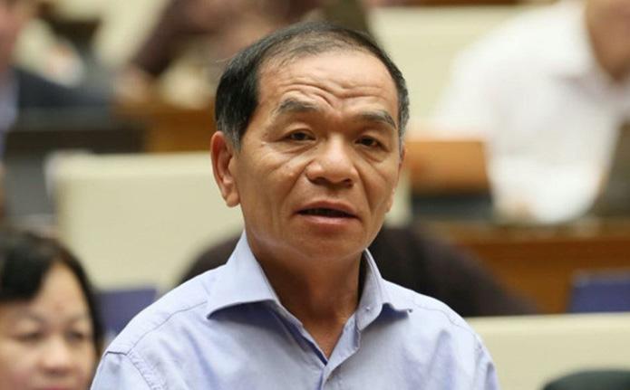 ĐB Lê Thanh Vân: ĐB Quốc hội là chính trị gia, không nên tăng cường đại biểu chuyên gia