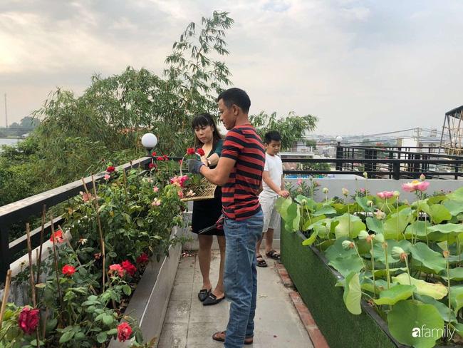 Doanh nhân Sài Gòn trồng cả vườn rau như trang trại và hồ sen trên sân thượng rộng 300m²  - Ảnh 17.