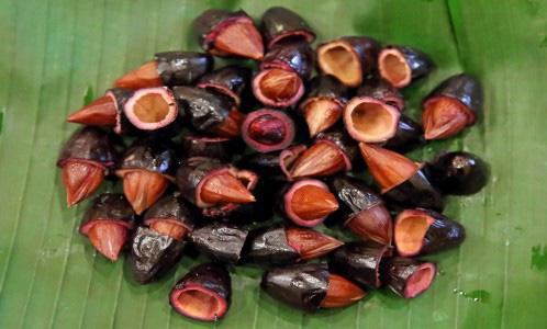 Có loại quả trông đen nhẻm, xấu xí nhưng ai biết cũng muốn mua ngay: Ăn 1 lần là nhớ suốt đời, trị được 15 loại bệnh vô cùng thần kỳ - Ảnh 6.