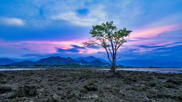 Bức ảnh Ông già và biển cả phiên bản Việt lọt top 1 ảnh về câu chuyện đại dương do National Geographic bình chọn và chia sẻ đầu tiên của chính tác giả - Ảnh 7.