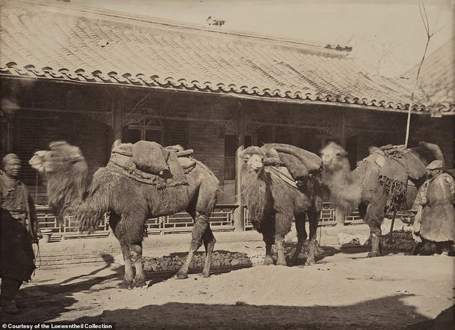 Loạt ảnh triều nhà Thanh nửa cuối thế kỷ 19: Khoảng cách giữa giới thượng lưu, trung lưu và bình dân khiến người xem phải ngỡ ngàng - Ảnh 16.