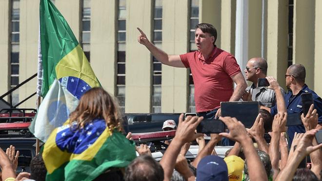Chiến lược thả tự nhiên khiến Brazil thành ổ dịch lớn nhất Nam bán cầu - Ảnh 1.