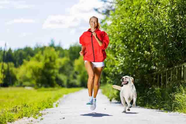 Giải pháp trị liệu và cải thiện sức khỏe toàn diện nhờ nuôi động vật: Có thể bạn chưa biết - Ảnh 4.
