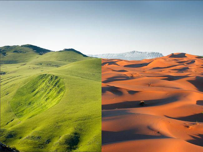 Chuyện lạ: Bí mật quái vật cổ đại ở sa mạc Sahara đáng sợ nhất lịch sử Trái đất - Ảnh 1.