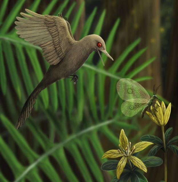 Phát hiện loài khủng long ăn thịt có kích cỡ nhỏ nhất trên Trái Đất, còn bé hơn cả một con chim ruồi - Ảnh 1.