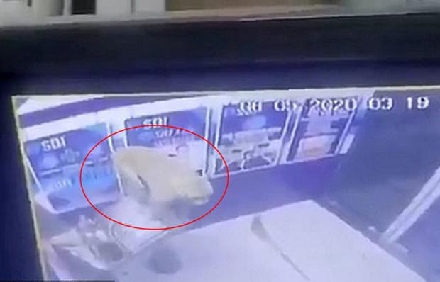 Cây ATM bị phá tan tành sau một đêm, cảnh sát       kiểm tra camera an ninh và phát hiện thủ phạm là kẻ không ai ngờ tới - Ảnh 2.