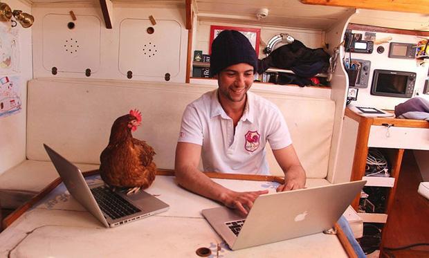 Không cần bạn gái, chàng trai du lịch thế giới cùng gà mái - Ảnh 3.