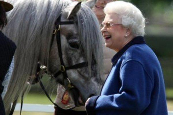 Nữ hoàng Anh gây kinh ngạc khi lần đầu tái xuất sau thời gian cách ly - Ảnh 2.