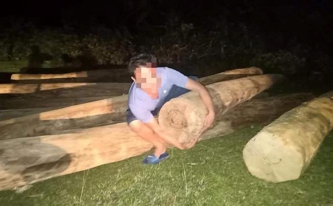Phát hiện hàng loạt cây gỗ lớn nằm vô chủ ở nghĩa trang, nghi của lâm tặc tập kết đi tiêu thụ
