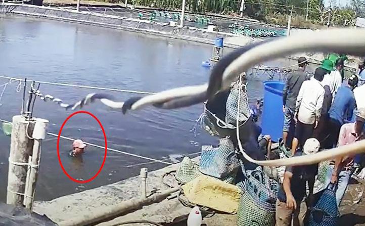 Vụ trộm gây xôn xao dư luận ''thủ phủ tôm'': Bắt tạm giam thêm 6 đối tượng