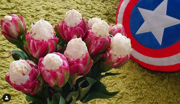 Ngỡ ngàng loài hoa lạ khi nở giống hệt cây kem, nhìn là muốn ăn - Ảnh 2.