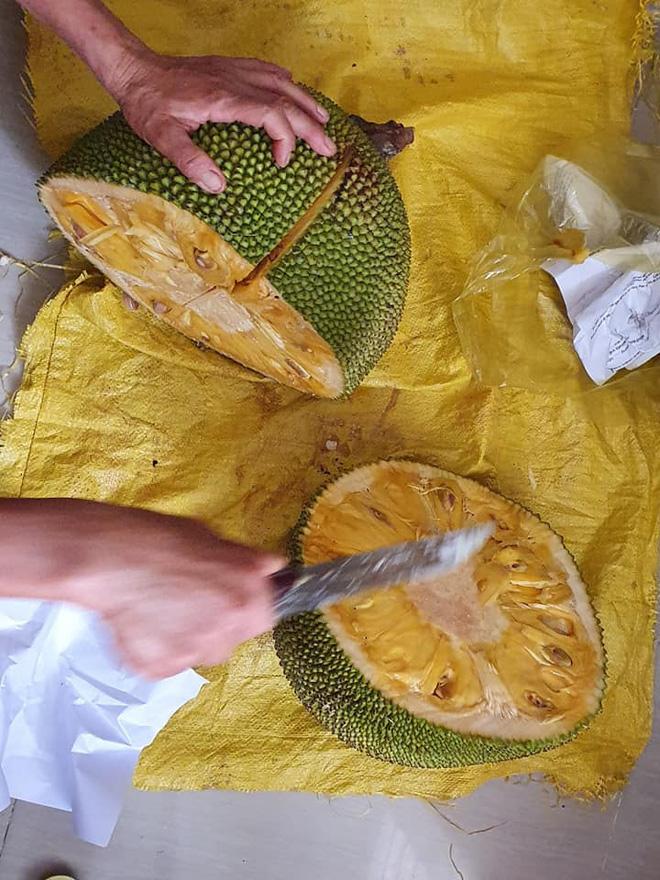 """Mẹ ở quê mang lên cho quả mít, cô gái tận dụng luộc ăn cả hạt và cái kết """"khét lẹt"""" - ảnh 1"""
